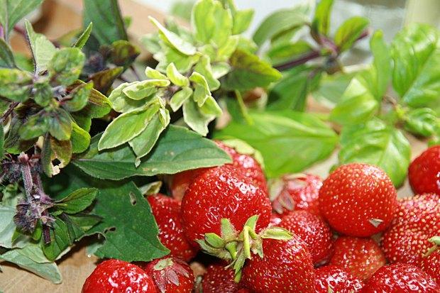Erdbeeren_Basilikum